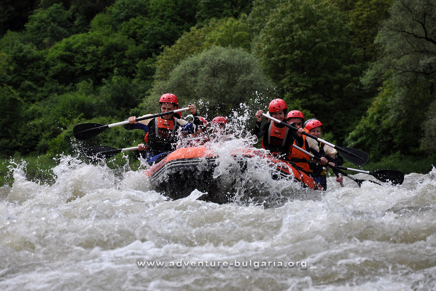 Team Building with rafting in Bulgaria